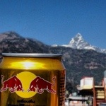 Drinks with lunch - Red Bull gives you wings!