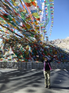 Prayer Flags over the road!
