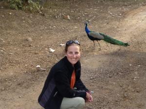 Natalie chasing peacocks