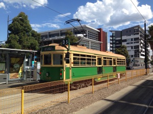 Melbourne's famous old trams